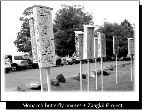 Monarch butterfly houses - Zaagkii Project