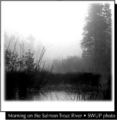 Morning on the Salmon River - SWUP photo