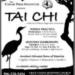 2014 Fall Tai Chi Poster