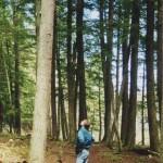 Jon Magnuson observes forest
