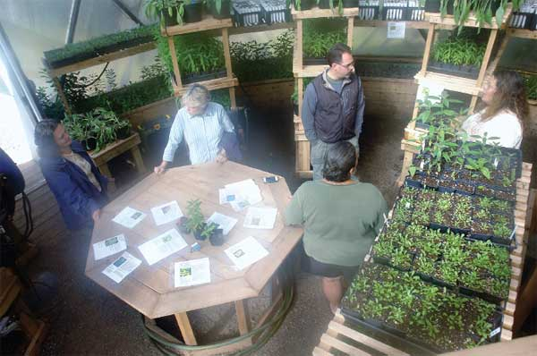 KBIC Native Plants Greenhouse