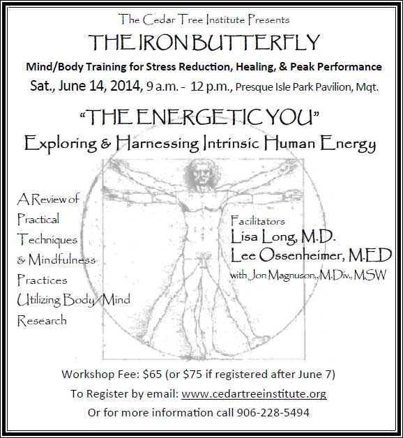 Iron Butterfly 2014