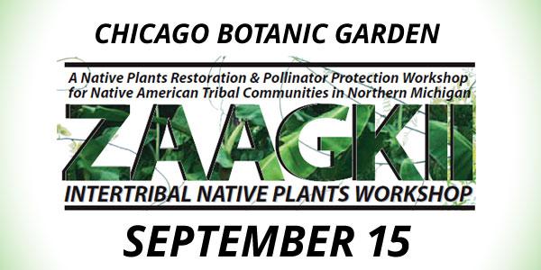 Zaagkii Workshop at Chicago Botanic Garden