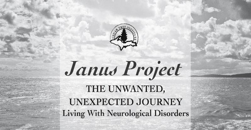Janus Project Spring Seminar 2017